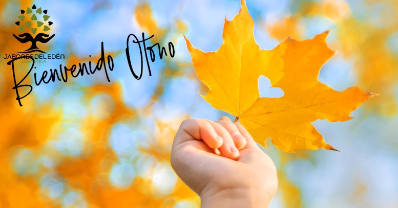 #otoño2020